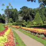 Partir en famille au Sri Lanka : 3 villes incontournables à visiter